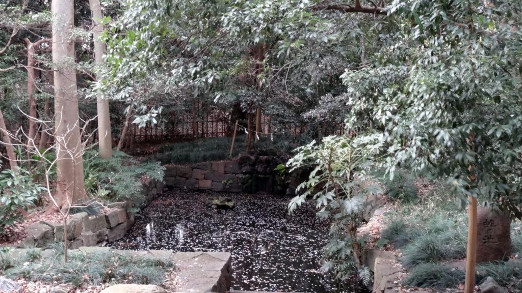 蛇の池 ご神体